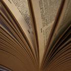 Pages du dictionnaire